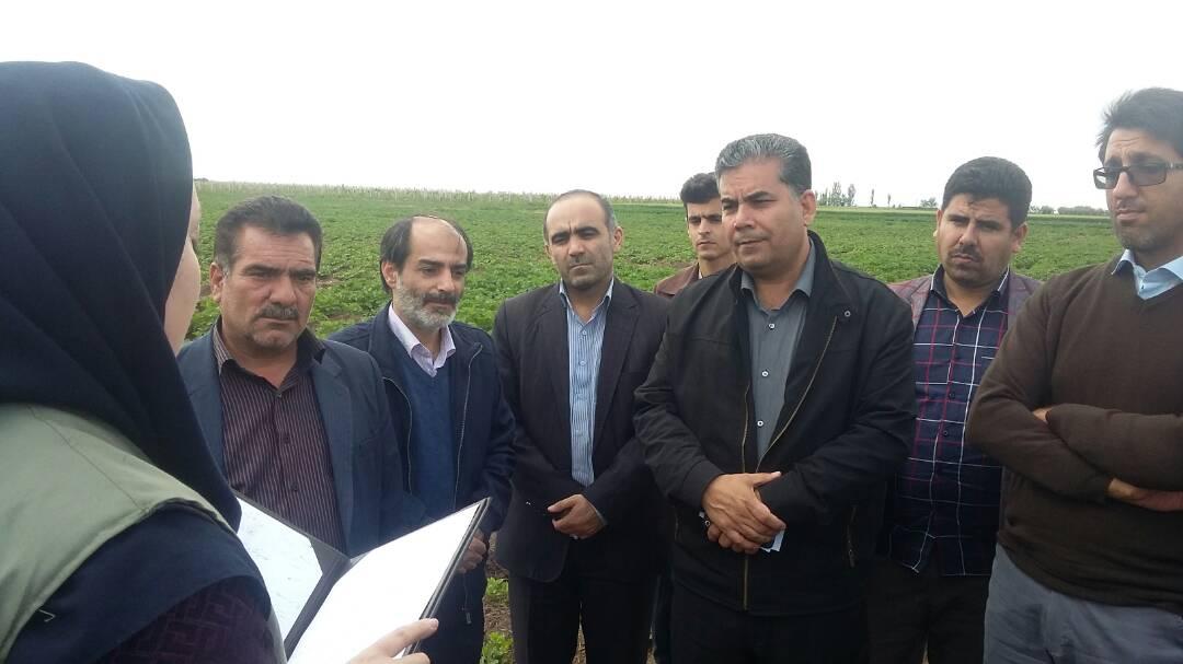 بازدید مجری ملی طرح حفاظت از تالاب های ایران از سایت های پروژه جلب مشارکت مردم برای احیای دریاچه ارومیه